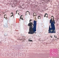 NEVER SAY GOODBYE -arigatou-(+DVD)