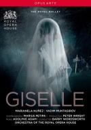 Giselle(Adam): Nunez Muntagirov The Royal Ballet