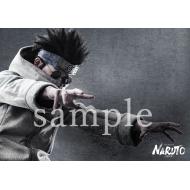 ブロマイド 2枚セット(油女シノ)/ ライブ・スペクタクル「NARUTO-ナルト-」ワールドツアー