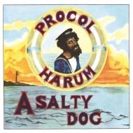 Salty Dog (180グラム重量盤レコード)
