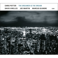 Dreamer Is The Dream (180グラム重量盤レコード)