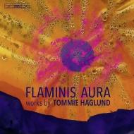 『フラミニス・アウラ』『魂の国』、他 エルンスト・シモン・グラーセル、ダーヴィト・アフカム&エーテボリ交響楽団、シリアクス=ペーション=ライティネン・トリオ、他