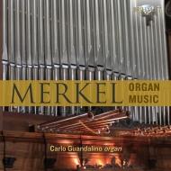 Organ Works: Guandalino