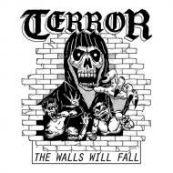 Walls Will Fall (7インチシングルレコード)