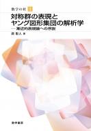 対称群の表現とヤング図形集団の解析学 数学の杜