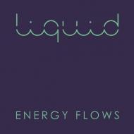 Energy Flows (3枚組アナログレコード)