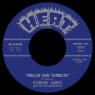 Rollin & Tumblin / Stranger Blues