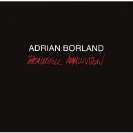 Beautiful Ammunition (2枚組アナログレコード)
