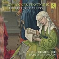 Secret Consolations: B.romain / Le Miroir De Musique