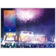 乃木坂46 4th YEAR BIRTHDAY LIVE 2016.8.28-30 JINGU STADIUM 【完全生産限定盤】(Blu-ray)