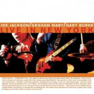 Summer In The City: Live In New York(180グラム重量盤レコード)