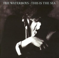 This Is The Sea (Collector's Edition)