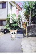 メチャイロちいき猫やってます! Daitocomics / ペットシリーズ
