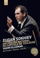 ブラームス:交響曲第1番、ベートーヴェン:ヴァイオリン協奏曲、バルトーク:かかし王子 トゥガン・ソヒエフ&トゥールーズ・キャピトール国立管、グルズマン