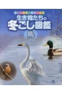 生き物たちの冬ごし図鑑 鳥 探して発見!観察しよう