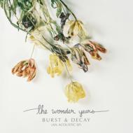 Burst & Decay (アナログレコード)