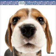 ビーグル / 2018年カレンダー