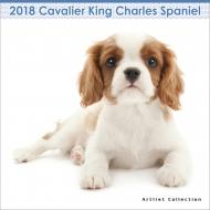(ミニ)キャバリア・キング・チャールズ・スパニエル / 2018年カレンダー
