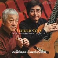 優しき玩具-music For Harmonica & Guitar: 崎元讓(Harmonica)小川和隆(G)
