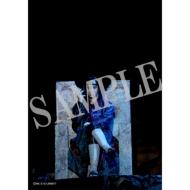 舞台写真2枚セット(うちはイタチ)/ ライブ・スペクタクル「NARUTO-ナルト-」〜暁の調べ〜