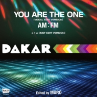 YOU ARE THE ONE (7インチアナログレコード)