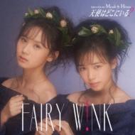 AKB48グループ 第8代じゃんけん女王はfairy w!nk!