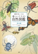 観察が楽しくなる美しいイラスト自然図鑑 昆虫編
