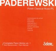 ピアノ作品全集 第1集 カロル・ラジウォノヴィチ