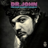 Professor Bizarre's Funknology (2枚組/180グラム重量盤レコード)