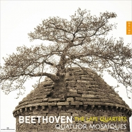 String Quartets Nos.12, 13, 14, 15, 16, Great Fugue : Quatuor Mosaiques (3CD)