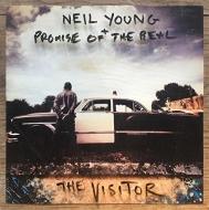 Visitor (2枚組アナログレコード)