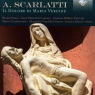 Il Dolore Di Maria Vergine: Velardi / Alessandro Stradella Consort