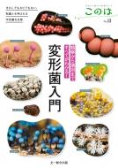 観察から識別まですべてがわかる!変形菌入門 きのこでもカビでもない、粘菌とも呼ばれる不思議な生物 生きもの好きの自然ガイド「このは」