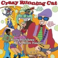 Crazy Running Cat