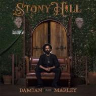 Stony Hill (2枚組アナログレコード)