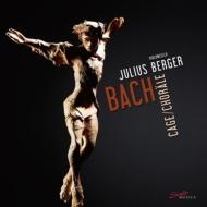 無伴奏チェロ組曲 ユリウス・ベルガー (3枚組/アナログレコード)