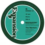 Destination (12インチシングルレコード)