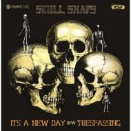 It' s A New Day / Trespassing (7インチシングルレコード/Dynamite Cuts)