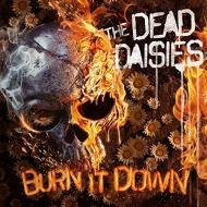 Burn It Down (アナログレコード)(+CD)