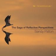 Saga Of Reflective Perspectives
