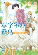 写字室の鵞鳥 欧州妖異譚 18 講談社X文庫