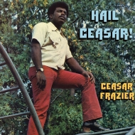 Hail Ceasar!  (アナログレコード)