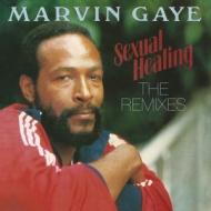 Sexual Healing: The Remixes【2018 RECORD STORE DAY 限定盤】(12インチシングルレコード)
