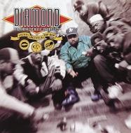 Stunts, Blunts And Hip Hop (2枚組/180グラム重量盤レコード/Music On Vinyl)