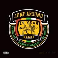 Jump Around 25 Year Remix (アナログレコード)