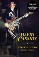 I Think I Love You: Greatest Hits Live (DVD+CD)