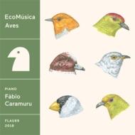 Ecomusica   Aves