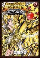 聖闘士星矢 NEXT DIMENSION 冥王神話 12 少年チャンピオン・コミックス・エクストラ