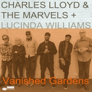 Vanished Gardens (2枚組/180グラム重量盤レコード/Blue Note)