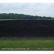Dirt & More Dirt